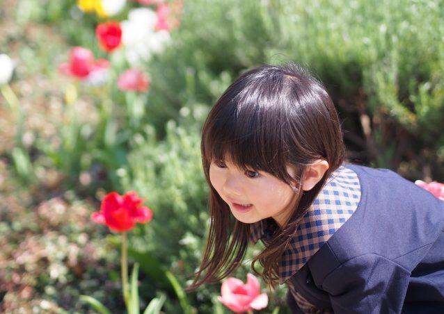 株式会社マルジュスタッフ【派遣保育士・横浜市磯子区】の画像 5