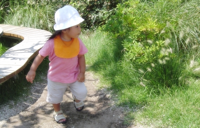 初台駅から徒歩6分/1-5歳児 定員71名の認可保育園の画像 3