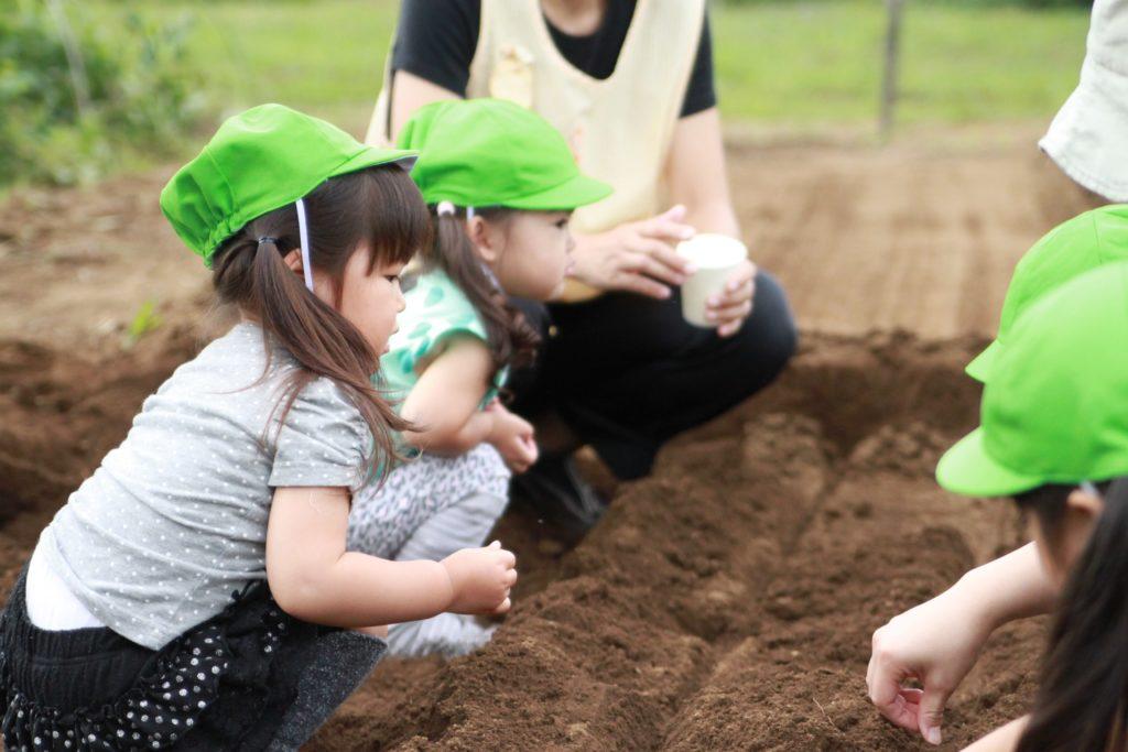 【保育士パート】開成町内の院内保育所の画像 2