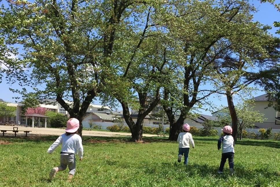 青葉西保育所(仙台市青葉区の小規模保育園)の画像 2