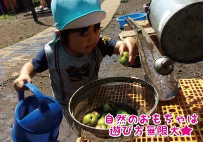こもねん保育園【正社員・パート】の画像 1